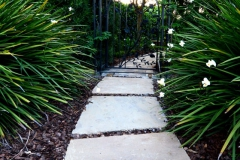 Large stepping stones to back yard gate